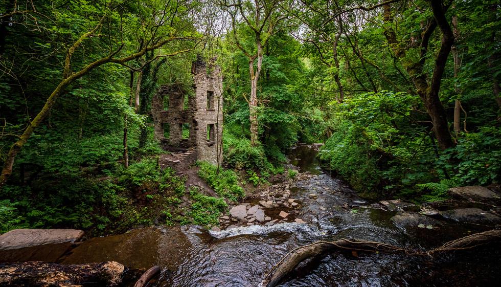 Naden Brook Mill-03.jpg
