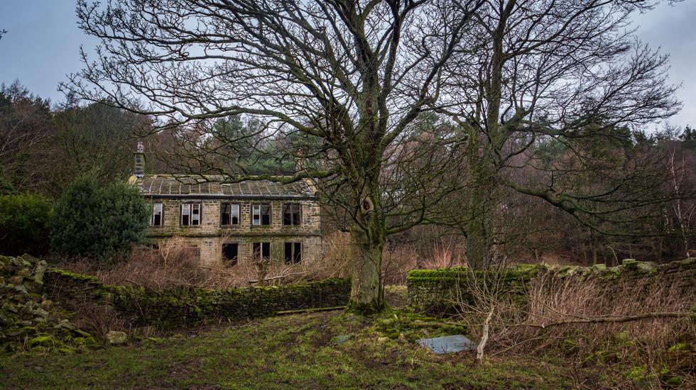 Hunters Hill Farm-11.jpg