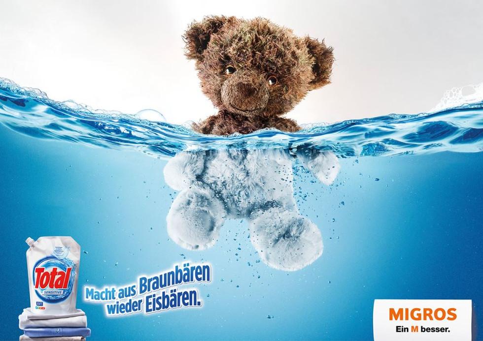 Eisbär_d.jpg