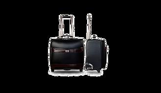 kisspng-hand-luggage-baggage-travel-trav