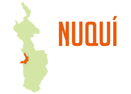 diagnosticos municipios-28.png