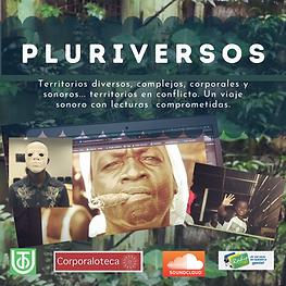 PLURIVERSOS (1).png