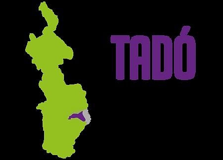diagnosticos municipios-29.png