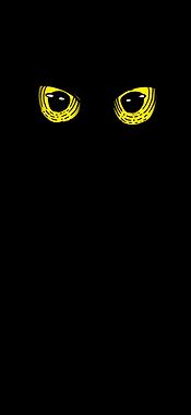 Yellow Eye Spirits Owl
