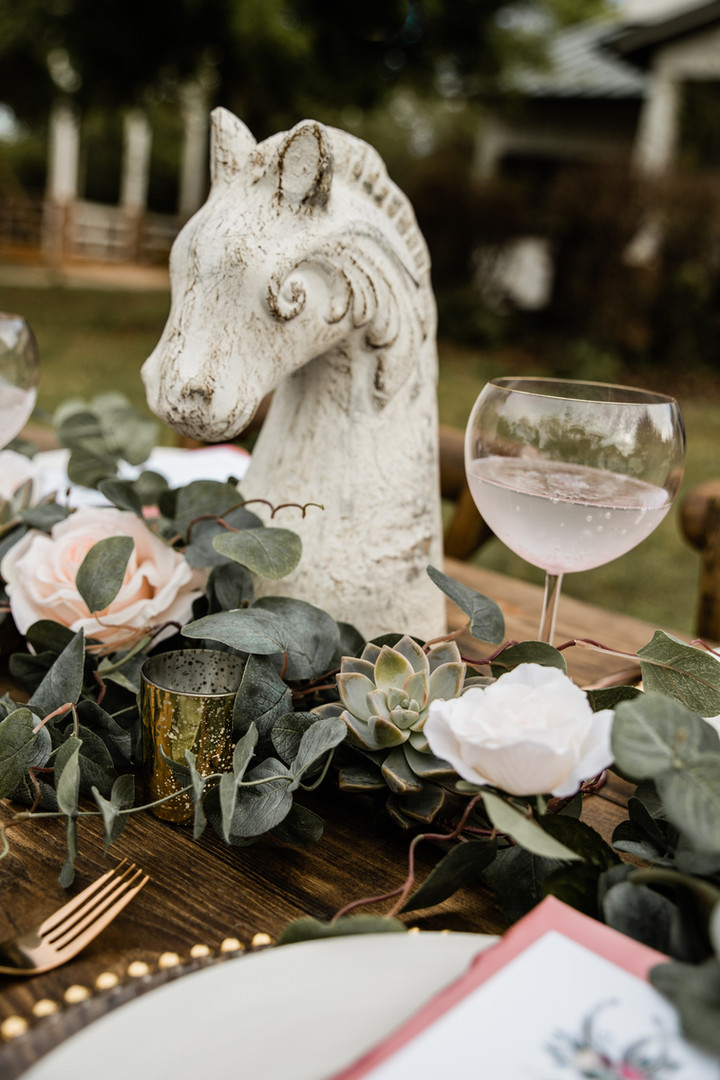 Equestrian Wedding (6 of 11).jpg