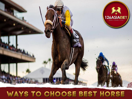 Ways to Choose Best Horse for Horse Race Betting