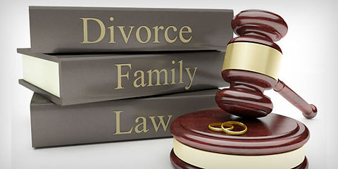 Family Law Books.jpg