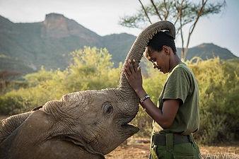 reteti-is-an-elephant.jpg