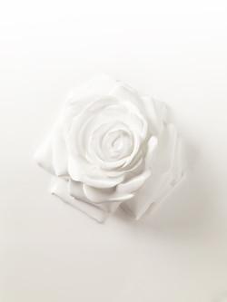Lancome_Rose_1.9