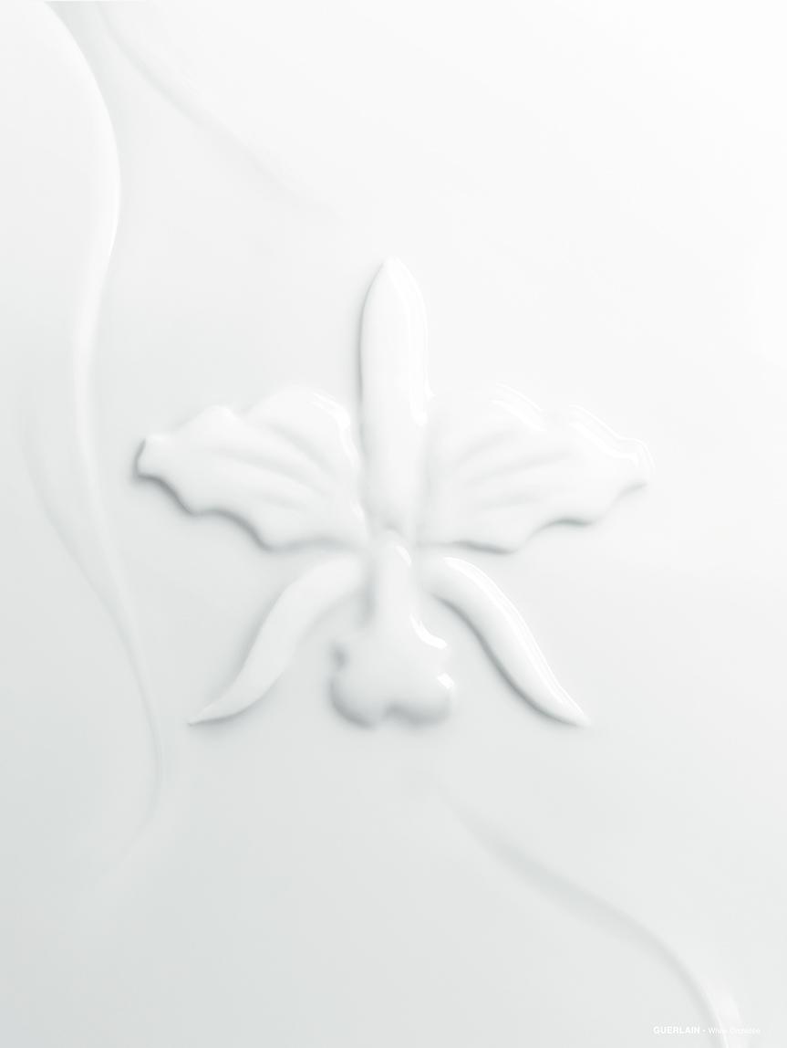 Orchidée_2_shape_5__107