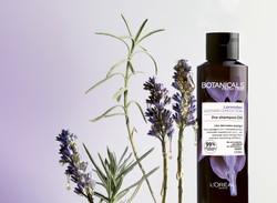 _Botanicals_lavander_Oil