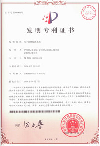 200610058243중국특허