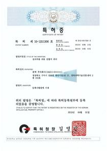 특허제10-1251306호