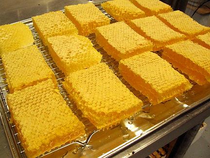 gâteaux de miel, rayons, laurentides, petit rucher du nord