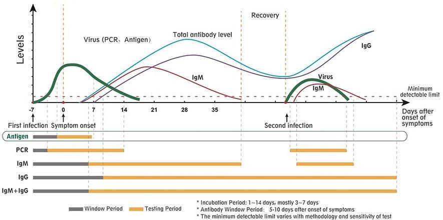 Antigenic%252520test_graph_edited_edited_edited.jpg