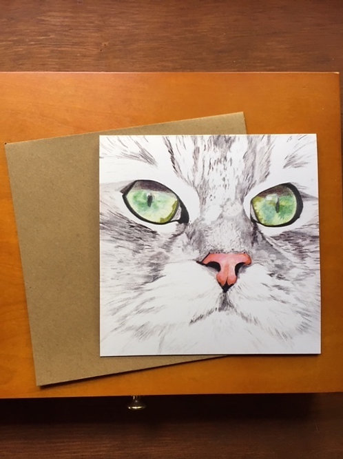 Cat Face Study - Barney