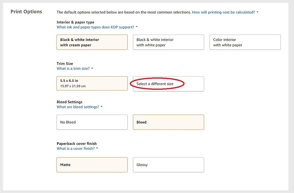 Amazon KDP screenshot 8
