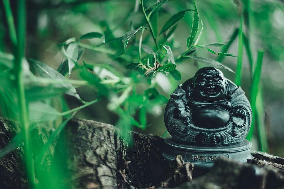 buddha-2705421_1920.jpg