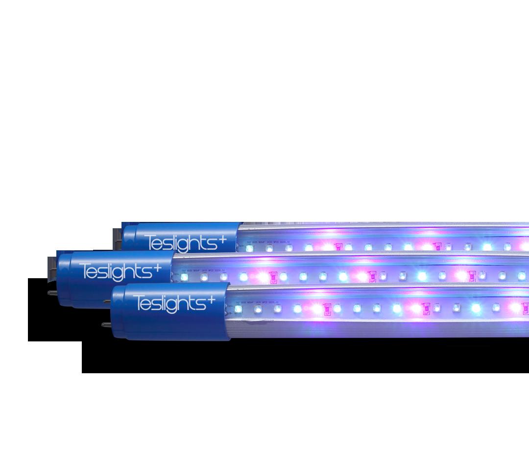 UV-C-01.png