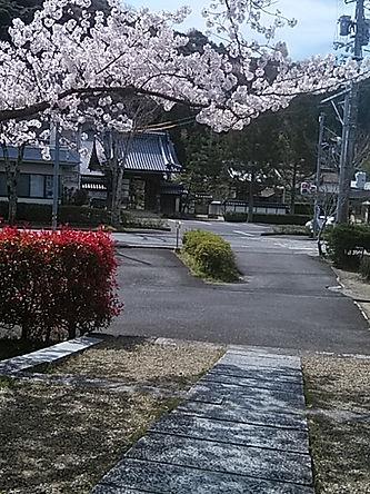 妙義寺(齋藤友見)DSC_3144.jpg