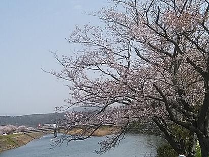 益田川土手(齋藤友見)DSC_3161.jpg