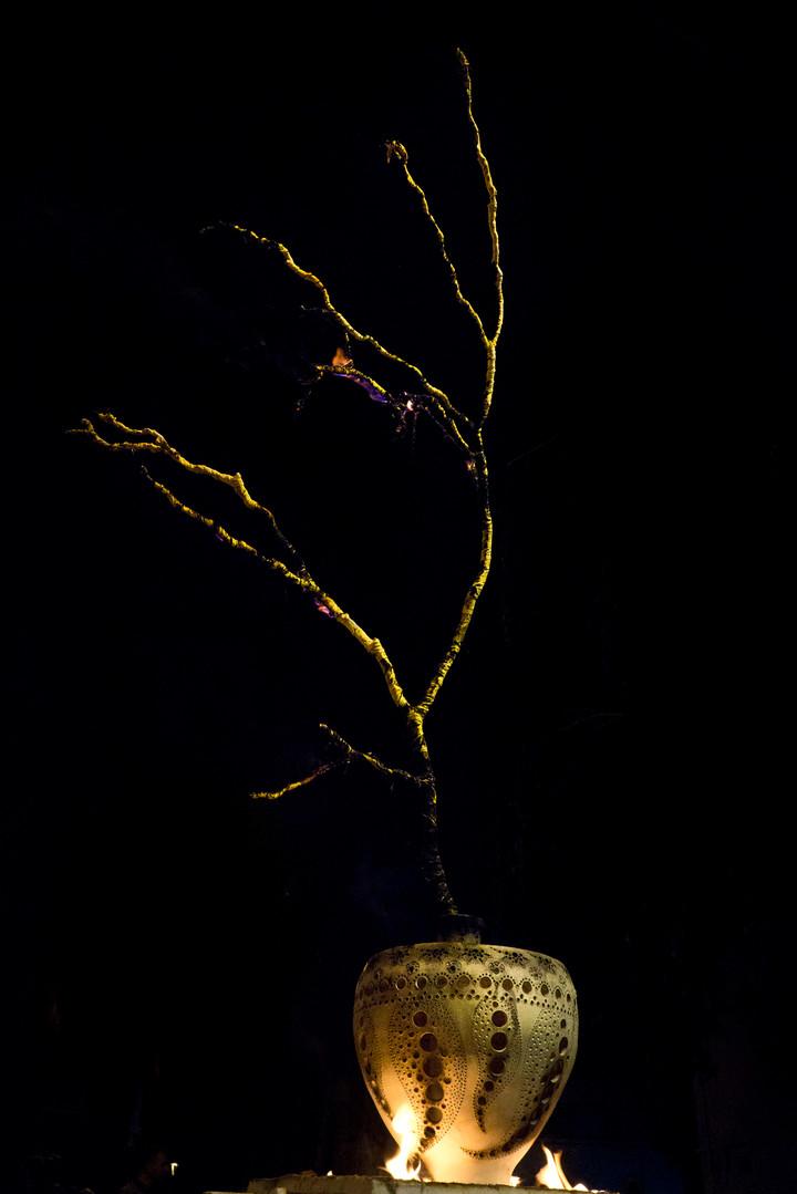 Ikebana of Fire by AG_86.jpg