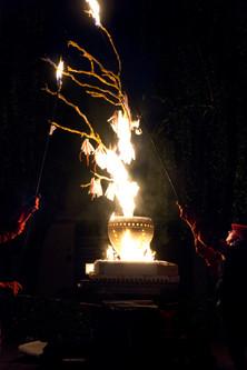 Ikebana of Fire by AG_77.jpg