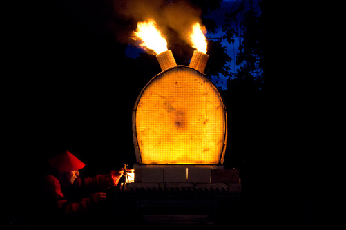 Ikebana of Fire by AG_61.jpg