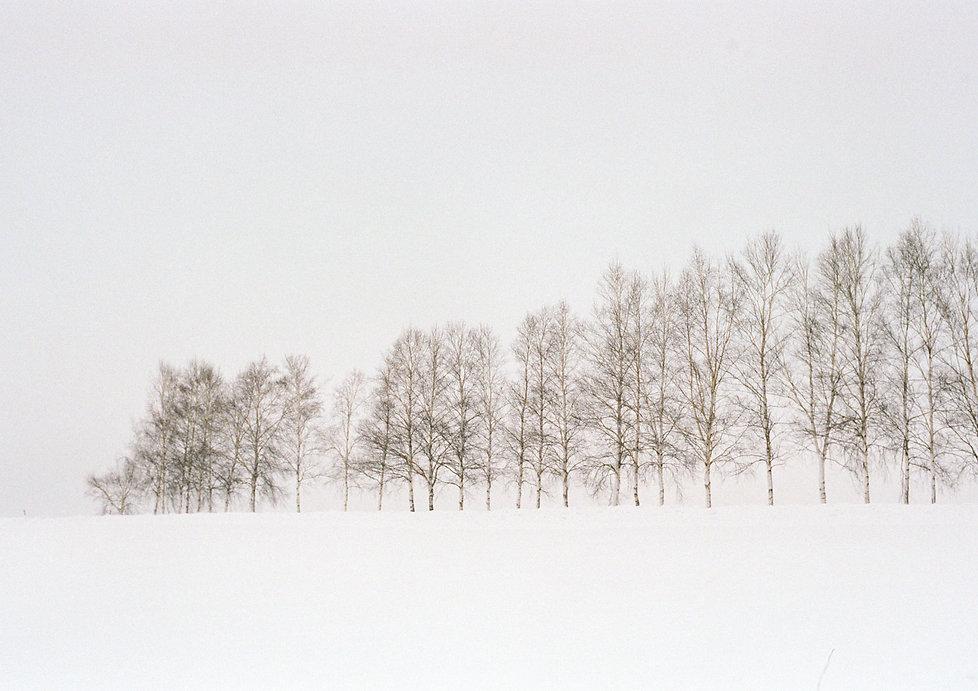 Hokkaido01.jpg