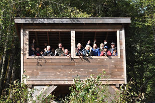 People at bear viewing