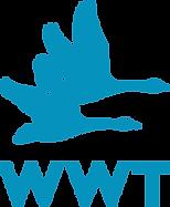 WWT_logo_RGB.png
