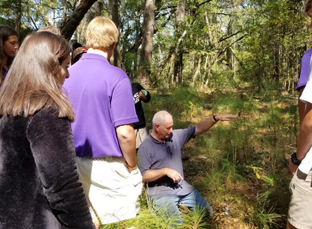 First Baptist School's James Island Campus Provides Creative Outdoor Learning