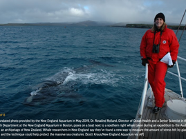 Chronic stress from fishing gear entanglement is recorded in baleen from a bowhead whale (Balaena my