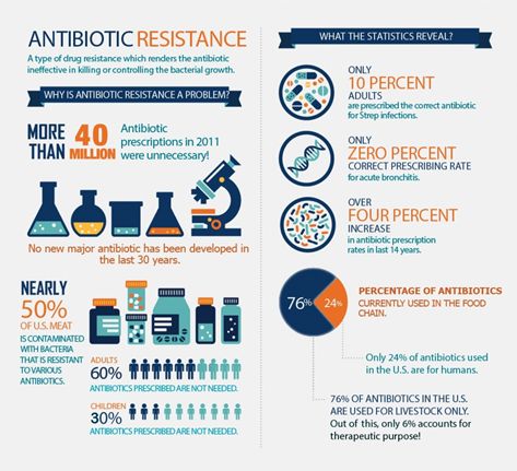 Antimicrobial Resistance in Animals