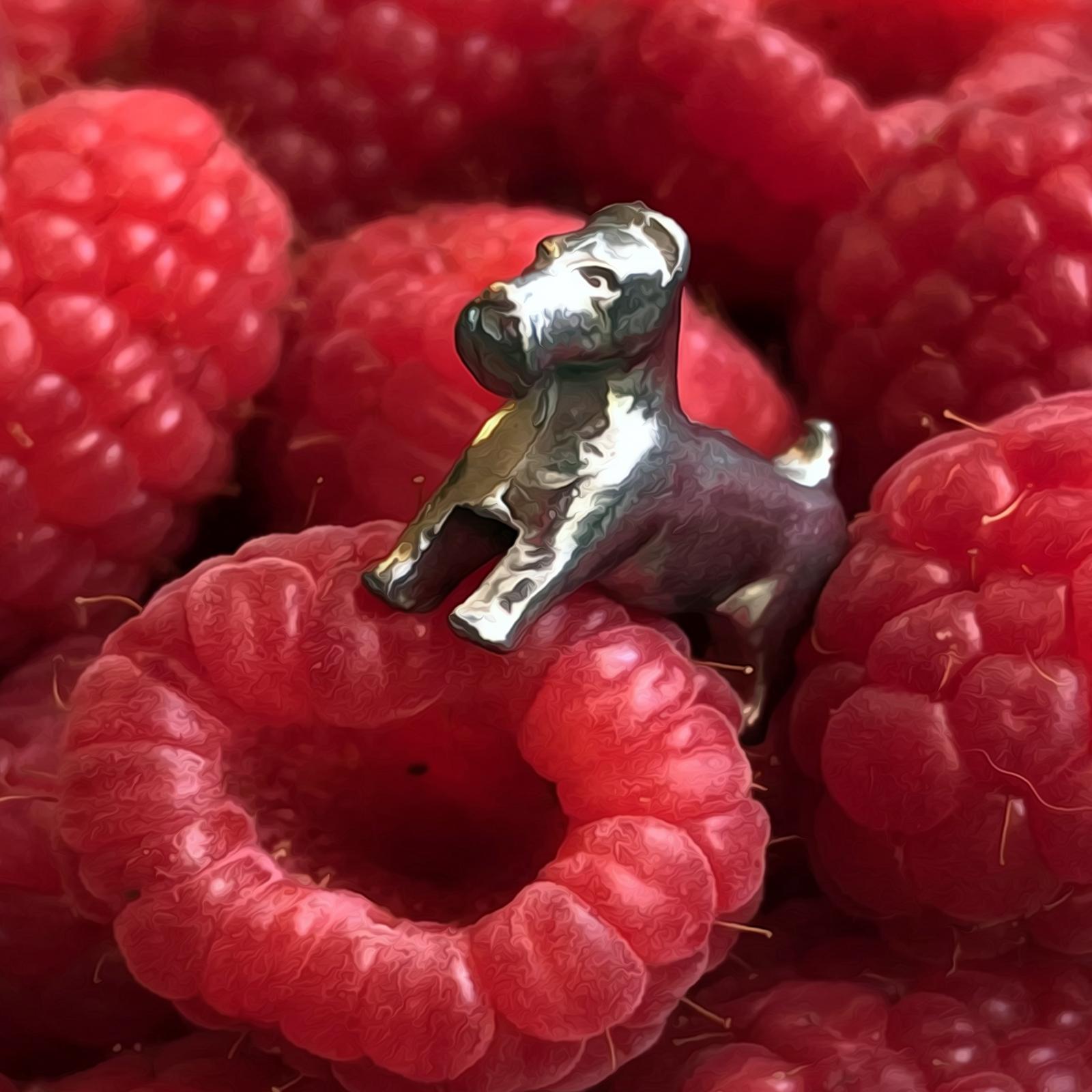 Exploring Planet Rubus