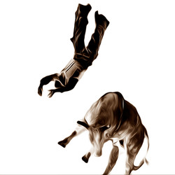 Rodeo 2