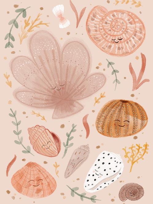 Shell Friends Print
