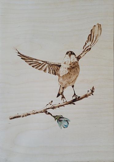 Copy of Birding Beyond  Size 18_ × 12_ Medium Pyrography On Wood..jpg