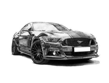 Mustang 23.4 by 33.1 Inches
