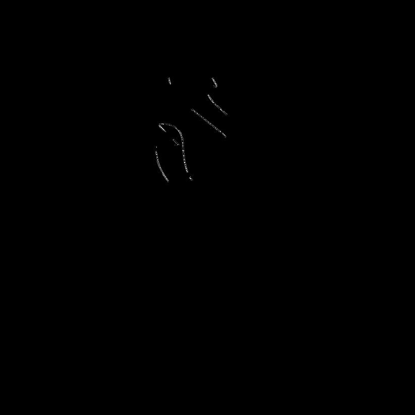sarracenica logo TRANSPARENT .png