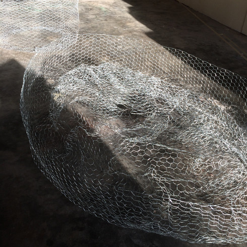 Wire Sculpture at studio