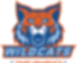 Valor Wildcat Mascot Wildcats Type Orang