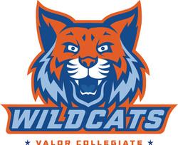 Valor Wildcat Mascot Wildcats Type Orang