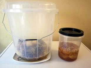Comb honey in a bucket