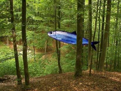 Fish in woods illustration