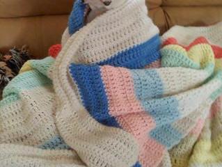 Winterizing Your Pet