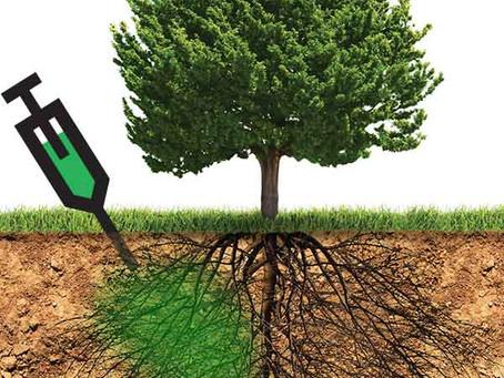 Closer look into Deep Root Fertilization