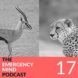 17: Kimo Takayesu, MD, on Cheetah Mind, Gazelle Mind, Human Mind