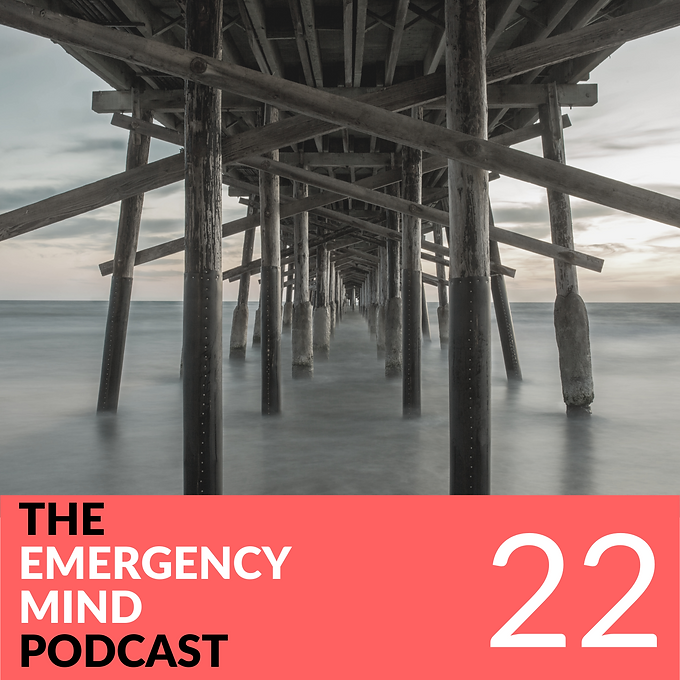22: Felix Ankel, MD, on Culture, Form, and Function