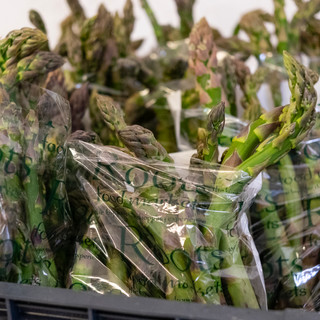 Asparagus Project Revised-6.jpg